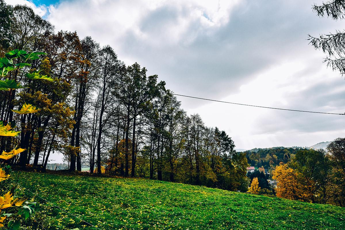 Grüne Vegetation, wie Pflanzen und Bäume werden dabei, je nach Lichteinwirkung, ebenfalls gesättigter dargestellt