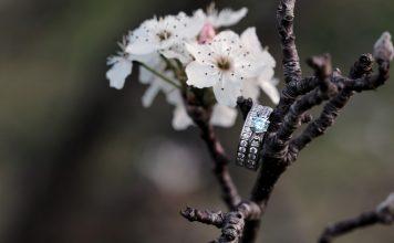 Tipps für schöne Frühlingsfotos