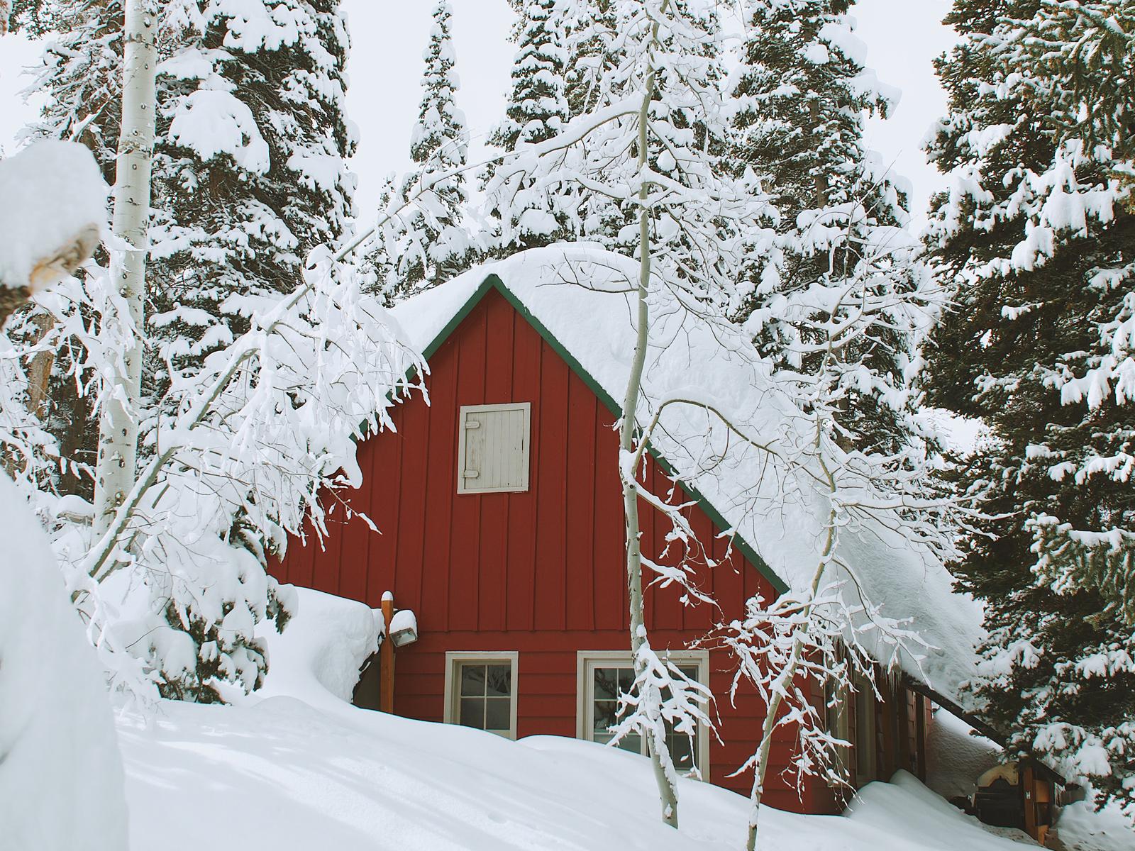 Traumhaft - so muss ein Foto im Schnee aussehen