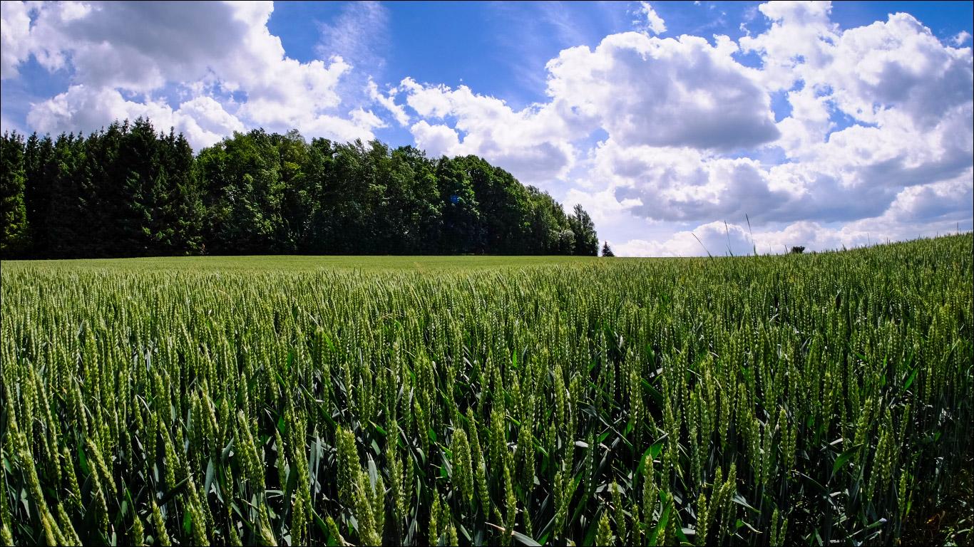 Landschaftsfotografie mit dem Meike Fisheyeobjektiv