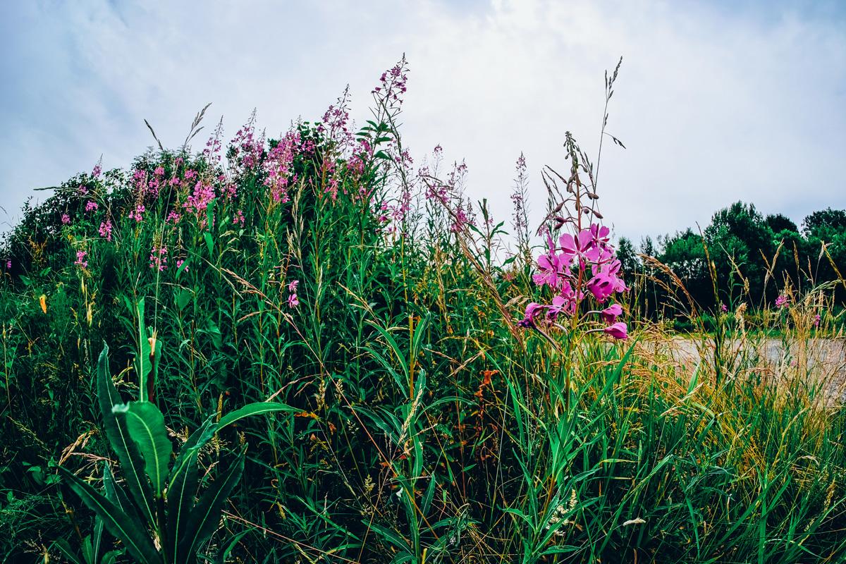 Landschaftsfotografie mit dem Tokina Fisheyeobjektiv